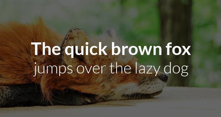 Free web fonts Google Lato